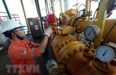 Sobrecumple  PetroVietnam metas de explotación y producción en enero