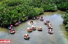 Cam Thanh, tierra de las palmas de agua