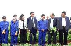 Insta Premier de Vietnam a acelerar aplicación tecnológica en agricultura