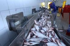 Aumentarán exportaciones de pescado Tra de Vietnam a  Estados Unidos