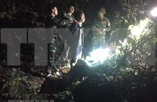 Captura Vietnam narcotraficante laosiano e incauta 294 kilógramos de metanfetamina