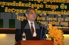 Vicepremier camboyano valora eficiencia del proyecto de cultivo del caucho de empresas vietnamitas