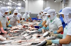 Espera Vietnam aumentar ingresos por exportación de pescado Tra en primer trimestre de 2019