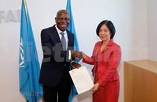 Reconoce organización internacional el desarrollo económico de Vietnam