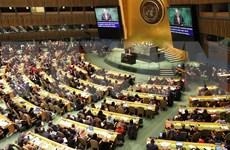 Define Vietnam en la ONU prioridades para alcanzar igualdad de género