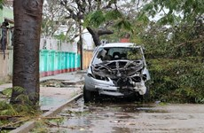 Envía Vietnam condolencias a Mozambique por pérdidas causadas por el ciclón Idai