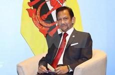 Buscan Vietnam y Brunei fortalecer cooperación en todos los sectores