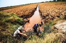 Recibirá Vietnam asistencia internacional para enfrentar cambio climático en Delta del Mekong