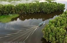 Promueven en Vietnam el turismo verde