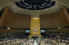 Aplaude Vietnam aprobación de resolución de Naciones Unidas contra financiamiento del terrorismo