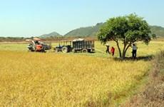 Construyen en Vietnam embalses para enfrentar sequía en provincia de Lam Dong