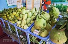 Decrecen en Vietnam ingresos por exportaciones agropecuarias y acuícolas en el primer trimestre del año