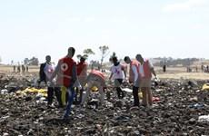 Participarán expertos indonesios en investigación de siniestro aéreo en Etiopía