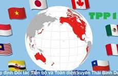 Impulsa ciudad vietnamita de Hai Phong implementación del Acuerdo Integral y Progresivo de Asociación Transpacífico