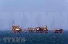 Celebran en Vietnam Conferencia Internacional de evaluación de potencial de petróleo de esquisto