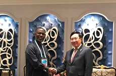 Vietnam potencia cooperación con países africanos