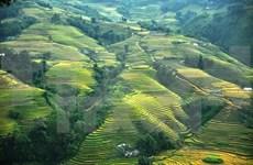 Alrededor de 81 mil turistas visitaron Sapa durante recientes feriados en Vietnam