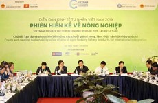 Proponen en Vietnam soluciones para el desarrollo sostenible de agricultura