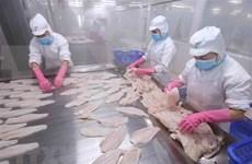 Reportan amplio crecimiento en la exportación de pescado Tra de Vietnam al Sudeste Asiático