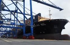 Atraca gigantesco buque portacontenedores en Terminal Internacional vietnamita de Hai Phong