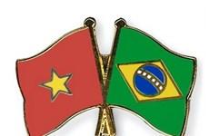 Vietnam celebra aniversario 30 de relaciones con Brasil