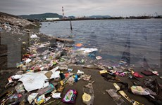 Debaten en Vietnam elaboración del plan nacional sobre gestión de residuos plásticos en oceánicos