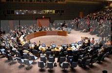 Participación de Vietnam en la ONU eleva su posición en la comunidad internacional