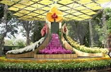 Coloridas orquídeas embellecen la ciudad vietnamita de Nha Trang