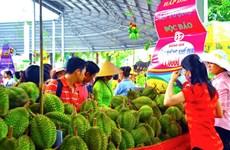 Inauguran Festival de Frutas del Sur de Vietnam