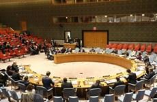 Confía exvicecanciller en elección de Vietnam como miembro de Consejo de Seguridad de la ONU