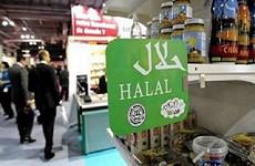 Resaltan potencialidades del mercado Halal para productos vietnamitas
