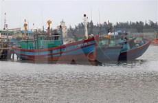"""Pescadores de Vietnam se unen contra la """"tarjeta amarilla"""" de Unión Europea"""