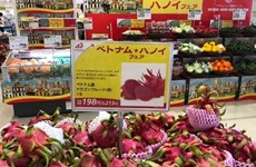 Fortalecen presencia de productos vietnamitas en Japón