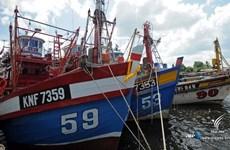 Prohíbe Tailandia la captura de mariscos en sus aguas