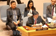 Elogia prensa internacional elección de Vietnam al Consejo de Seguridad