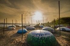 Despierta atención de turistas en Vietnam novedosa exhibición de barcas circulares