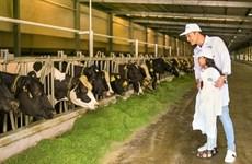Grupo lácteo vietnamita Vinamilk planea entender sus actividades productivas en Ha Tinh