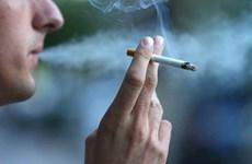 Aprecia alianza sudesteasiática prohibición en Indonesia de publicidad sobre el tabaco en internet