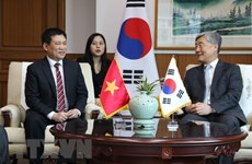 Estudia Vietnam experiencias de Corea del Sur en auditoría informática