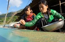 Papel sagrado de minoría étnica vietnamita para rituales espirituales