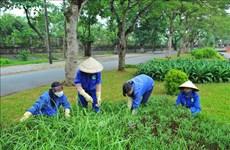 Intercambian expertos vietnamitas y extranjeros sobre capacitación profesional en Medio Ambiente