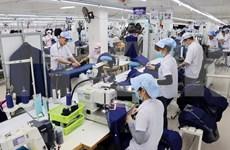 Dispuesta ciudad de Da Nang a aprovechar Tratado de Libre Comercio entre Vietnam y la UE
