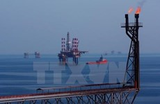 Aporta Vietsovpetro más de 452 millones de dólares al presupuesto estatal