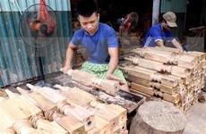Desafíos en desarrollo rural de región montañosa del norte de Vietnam