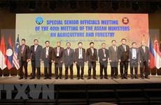 Inauguran en Vietnam Conferencia de Altos Funcionarios de Agricultura y Silvicultura de la ASEAN