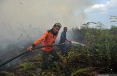 Detectan casi 19 mil focos de incendio en Sudeste Asiático y Papúa Nueva Guinea