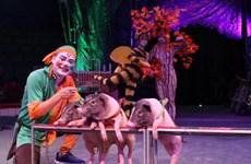 Desarrollan en Vietnam circo con animales domésticos