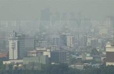 Promueven cooperación en la ASEAN para uso sostenible de turberas y mitigación de bruma