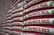 Tailandia logra ingreso multimillonario por intercambio comercial con socios de TLC
