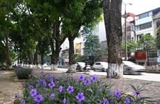 Desarrollan en Vietnam seminario sobre crecimiento verde de Hanoi